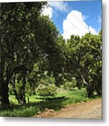 Out On A Country Road Metal Print