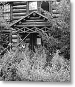Over Grown And Forgotten Metal Print