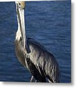 Over The Shoulder Pose Metal Print