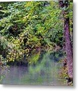 Overcast Reflections At Buck Creek Metal Print