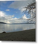 Owen Beach Metal Print