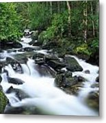 Owengarriff River, Killarney National Metal Print