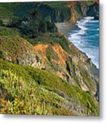 Pacific Shoreline Vii Metal Print
