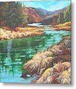 Pack River Color Metal Print