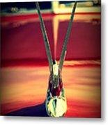 Packard Swan 3 Metal Print