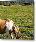 Paint Horse And Mount Rainier Metal Print by Stacey Lynn Payne
