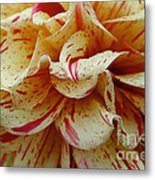 Paint Spattered Petals Metal Print