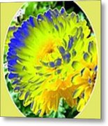 Painted Chrysanthemums Metal Print