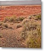Painted Desert 3 Metal Print