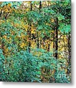 Painted Gold With Sunlight Metal Print