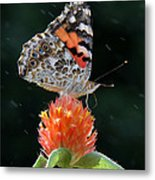 Painted Lady In A Shower Metal Print