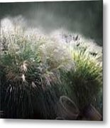 Painted Pampas Metal Print