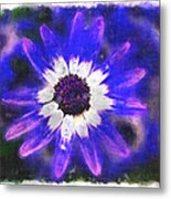 Painted Purple  Metal Print