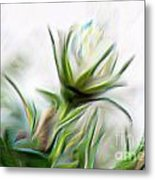 Painterly White Roses Metal Print