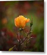 Painterly Yellow Rose Metal Print