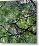 Painting Of The Branches Metal Print