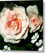 Pale Pink Roses In Garden Metal Print