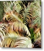Palm Bank Metal Print