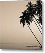 Palm Dreams Metal Print