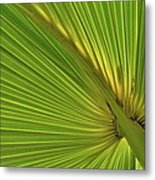 Palm Leaf II Metal Print