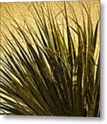 Palm Leaves 1 Metal Print