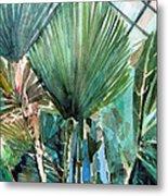 Palm Light Metal Print