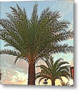 Palm On The Avenida Metal Print