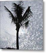 Palm Shadow Metal Print
