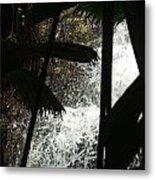 Palm Silhouette Metal Print