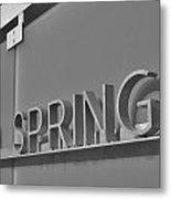 Palm Springs 2 Metal Print