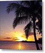 Palm Sunset Metal Print