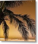 Palm Tree And Sunset In Mexico Metal Print