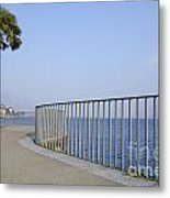Palm Tree On The Lakefront Metal Print
