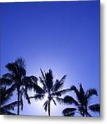 Palm Tree Silhouettes Metal Print