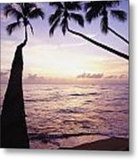 Palm Trees At Dusk Metal Print