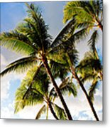 Palm Trees At Twilight Metal Print