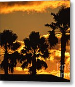 Palm Trees In Sunrise Metal Print