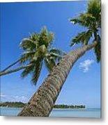 Palm Trees On A Tropical Beach, Fiji Metal Print