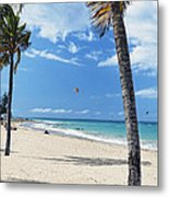 Palm Trees On Ocean Park Beach Metal Print by George Oze