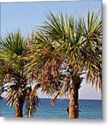Palm Trees Metal Print by Sandy Keeton