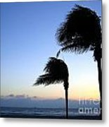 Palm Trees Swaying In The Wind Metal Print by Yali Shi