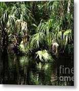 Palmettoes In The River Metal Print