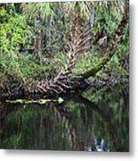 Palms On The River Metal Print