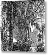 Panama Railway, 1875 Metal Print