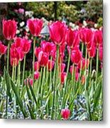 Panel Of Pink Tulips Metal Print