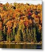 Panorama Of Trees Along The Waters Edge Metal Print