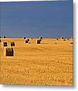 Panoramic Of A Straw Field, Near Val Metal Print