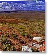 Panoramic View Of Fossil Butte Nm Valley Metal Print