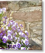 Pansies And Pussywillows Metal Print