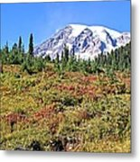 Paradise In Fall On Mt. Rainier 2 Metal Print